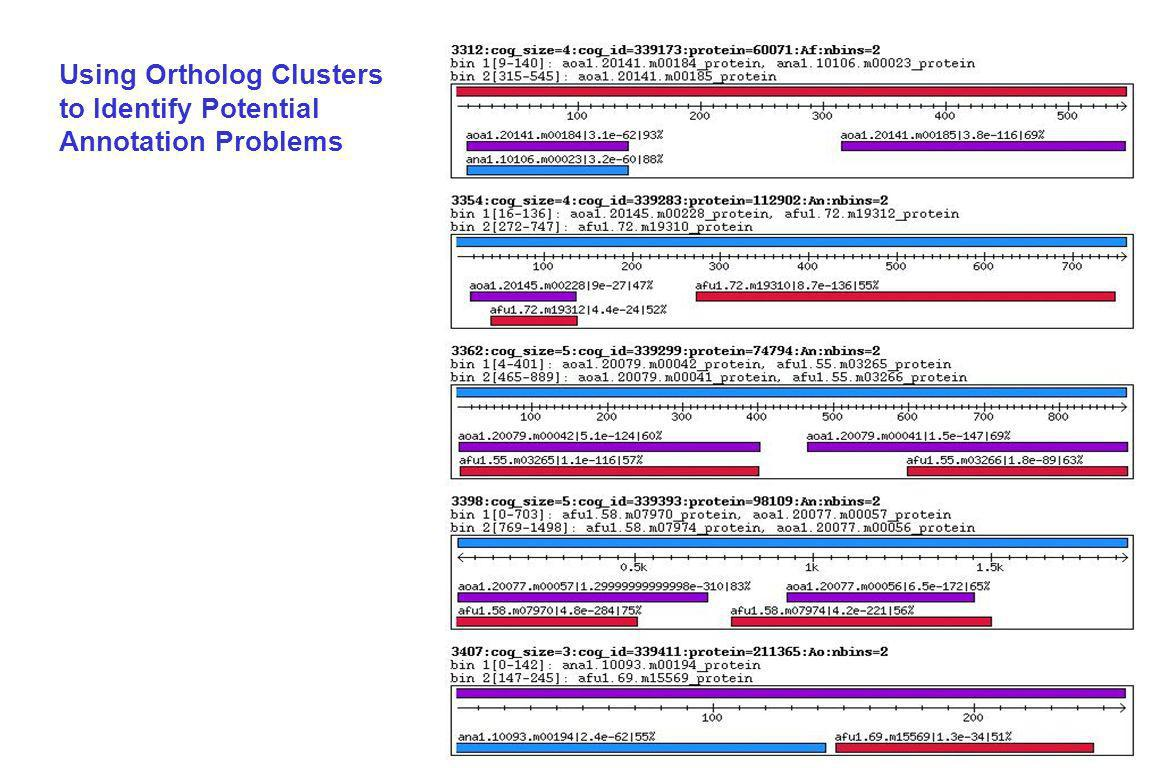 Using Ortholog Clusters to Identify Potential Annotation Problems