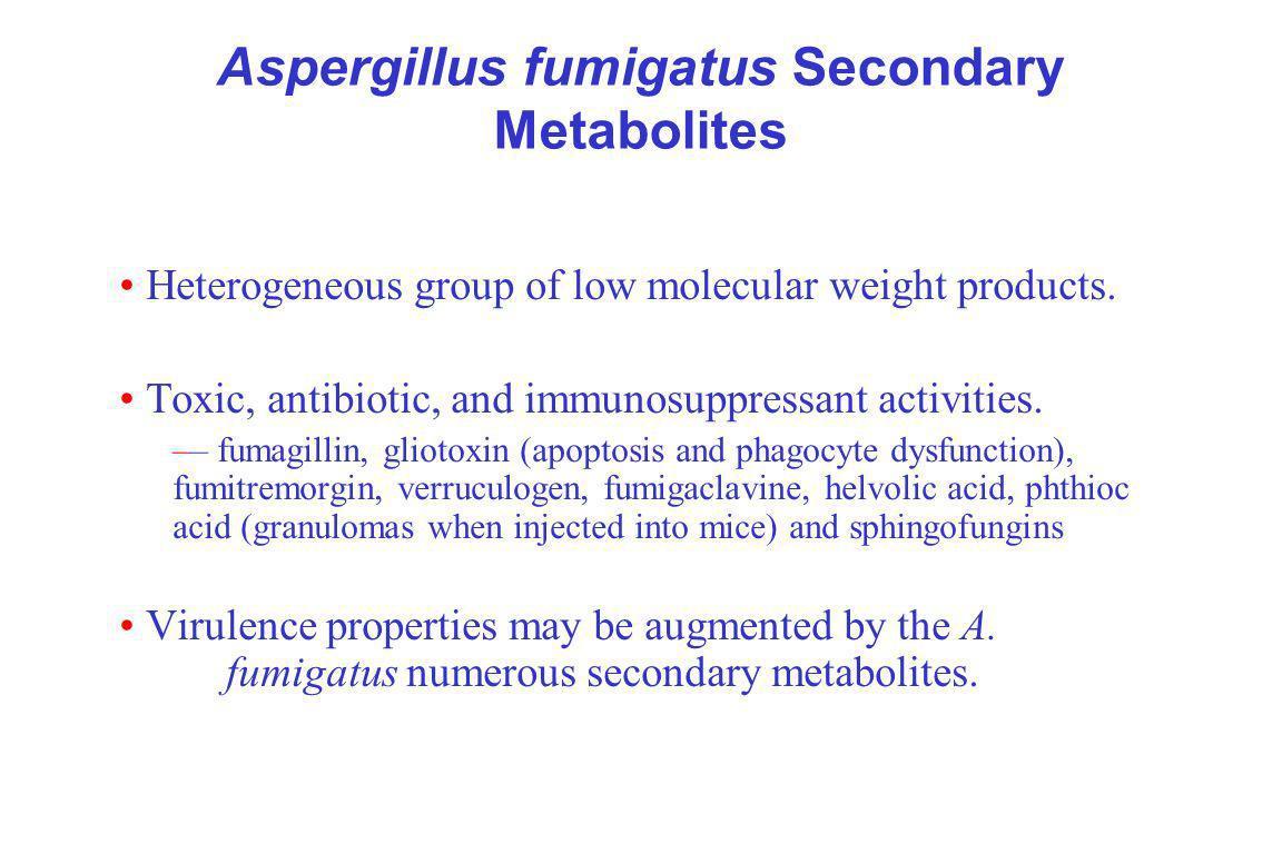 Aspergillus fumigatus Secondary Metabolites Heterogeneous group of low molecular weight products.