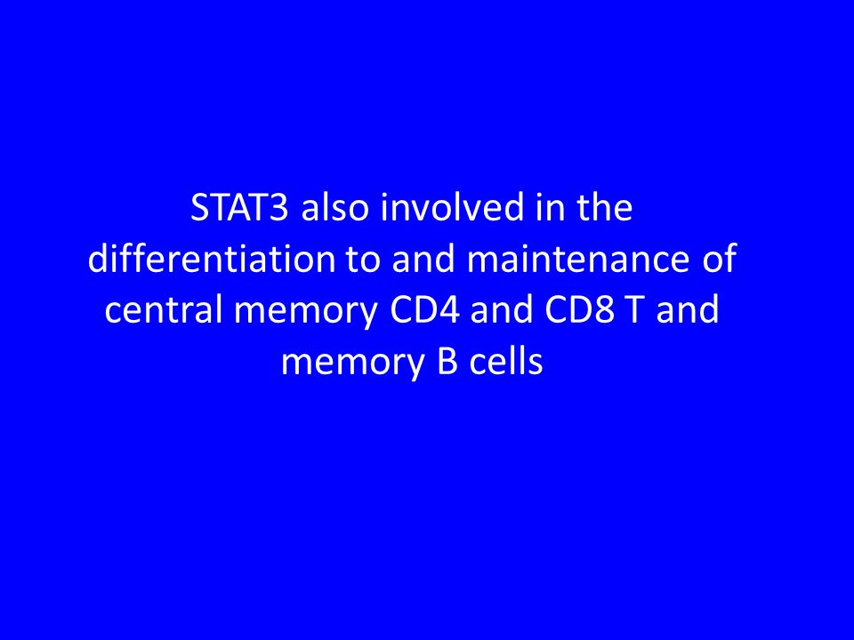 STAT3 also involved in the differentiation to and maintenance of central memory CD4 and CD8 T and memory B cells