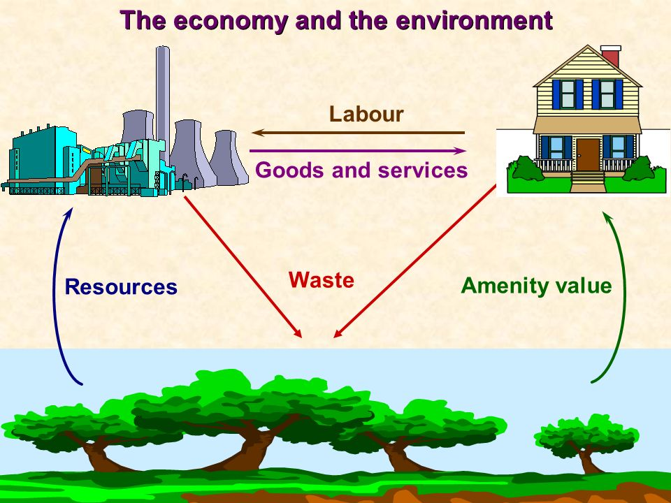 (Clipart for the environment: e.g. countryside scene) Goods and services Labour Waste The economy and the environment Resources Amenity value