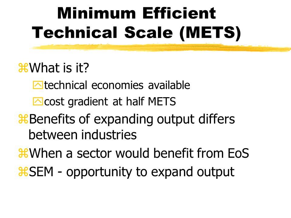 Minimum Efficient Technical Scale (METS) zWhat is it.