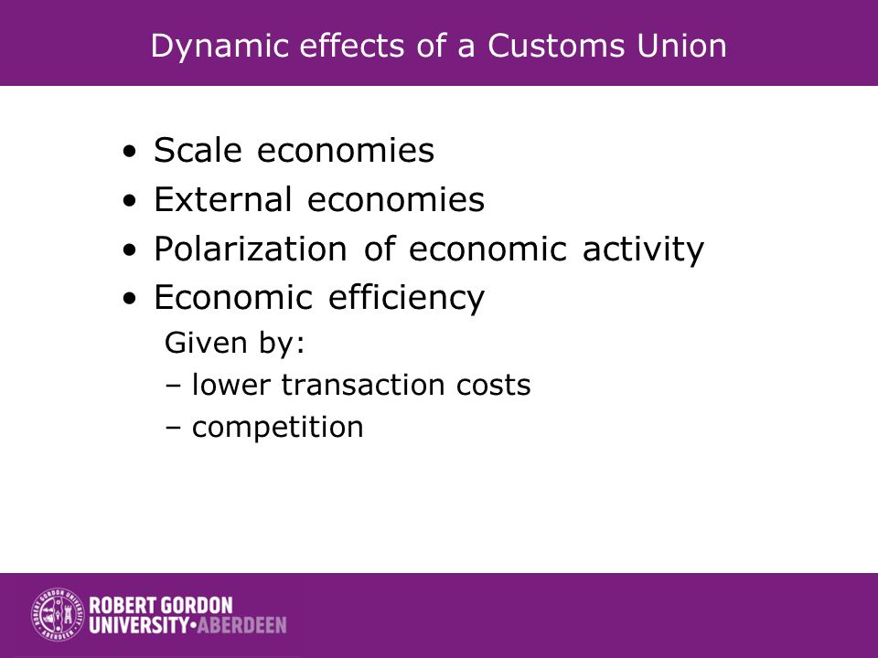 Dynamic effects of a Customs Union Scale economies External economies Polarization of economic activity Economic efficiency Given by: –lower transacti