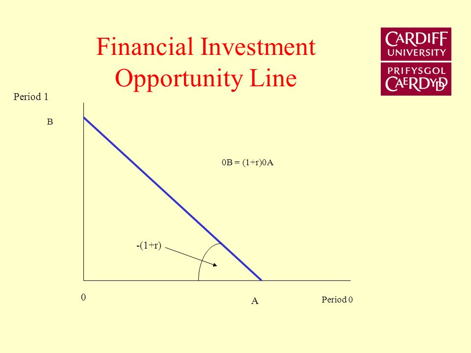 Physical Investment Opportunity Frontier Period 1 Period 0 Y0Y0 C1C1 C0C0 Cost of investment Return on investment E