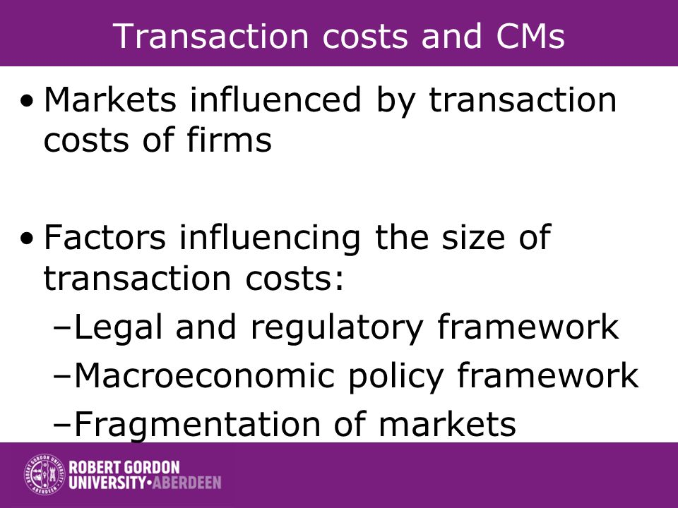 Transaction costs and CMs Markets influenced by transaction costs of firms Factors influencing the size of transaction costs: –Legal and regulatory framework –Macroeconomic policy framework –Fragmentation of markets
