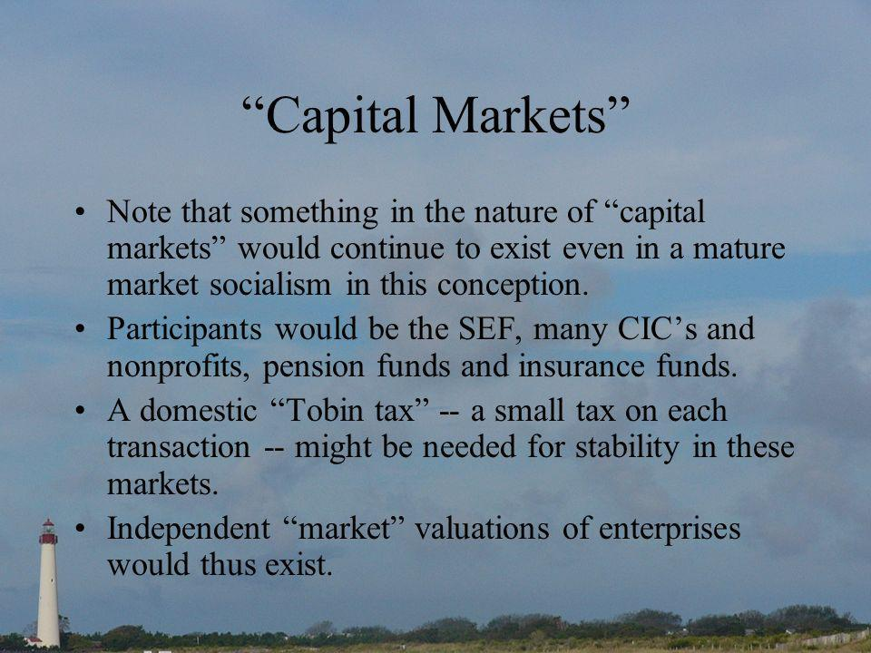 Capital Markets Note that something in the nature of capital markets would continue to exist even in a mature market socialism in this conception.