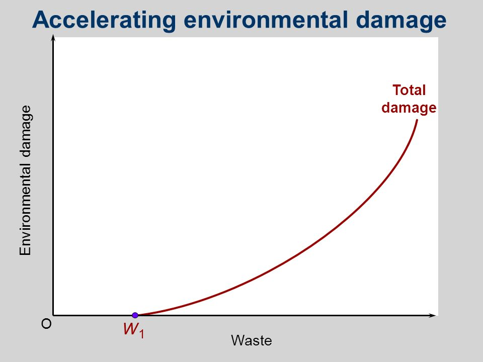 Total damage Accelerating environmental damage O W1W1 Environmental damage Waste
