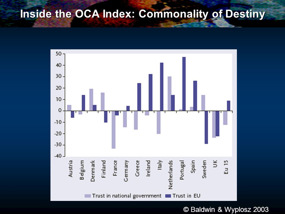 Inside the OCA Index: Commonality of Destiny © Baldwin & Wyplosz 2003