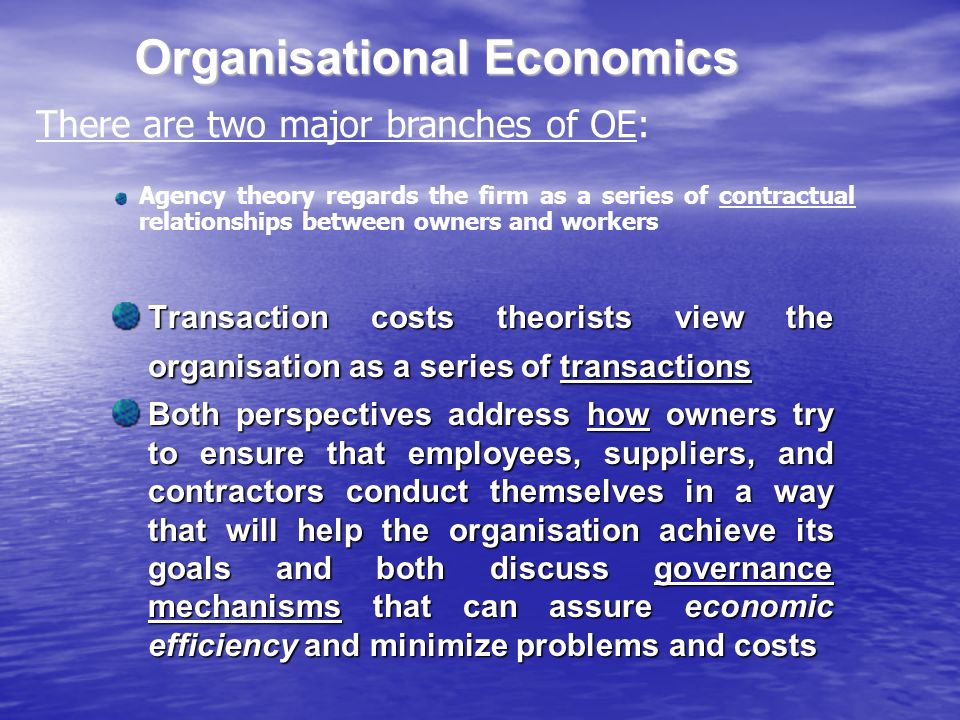 Organisational Economics Transaction costs theorists view the organisation as a series of transactions Both perspectives address how owners try to ensure that employees, suppliers, and contractors conduct themselves in a way that will help the organisation achieve its goals and both discuss governance mechanisms that can assure economic efficiency and minimize problems and costs There are two major branches of OE: Agency theory regards the firm as a series of contractual relationships between owners and workers