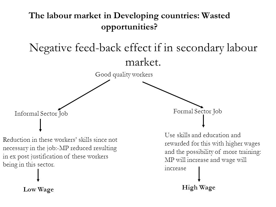 The labour market in Developing countries: Wasted opportunities? Negative feed-back effect if in secondary labour market. Good quality workers Reducti