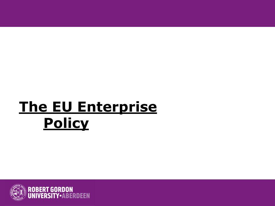 Business Constraints European Commission, 2007