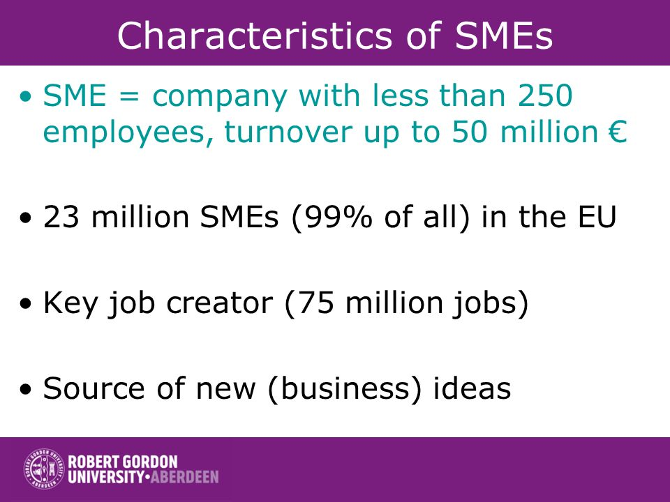 Characteristics of SMEs SME = company with less than 250 employees, turnover up to 50 million 23 million SMEs (99% of all) in the EU Key job creator (75 million jobs) Source of new (business) ideas