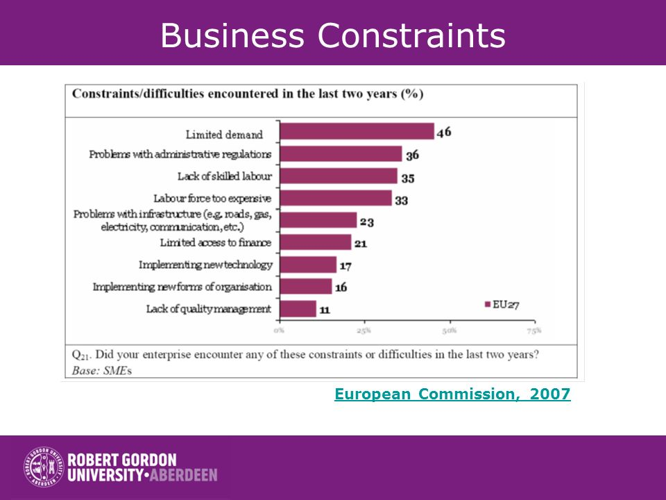 Business Constraints European Commission, 2007