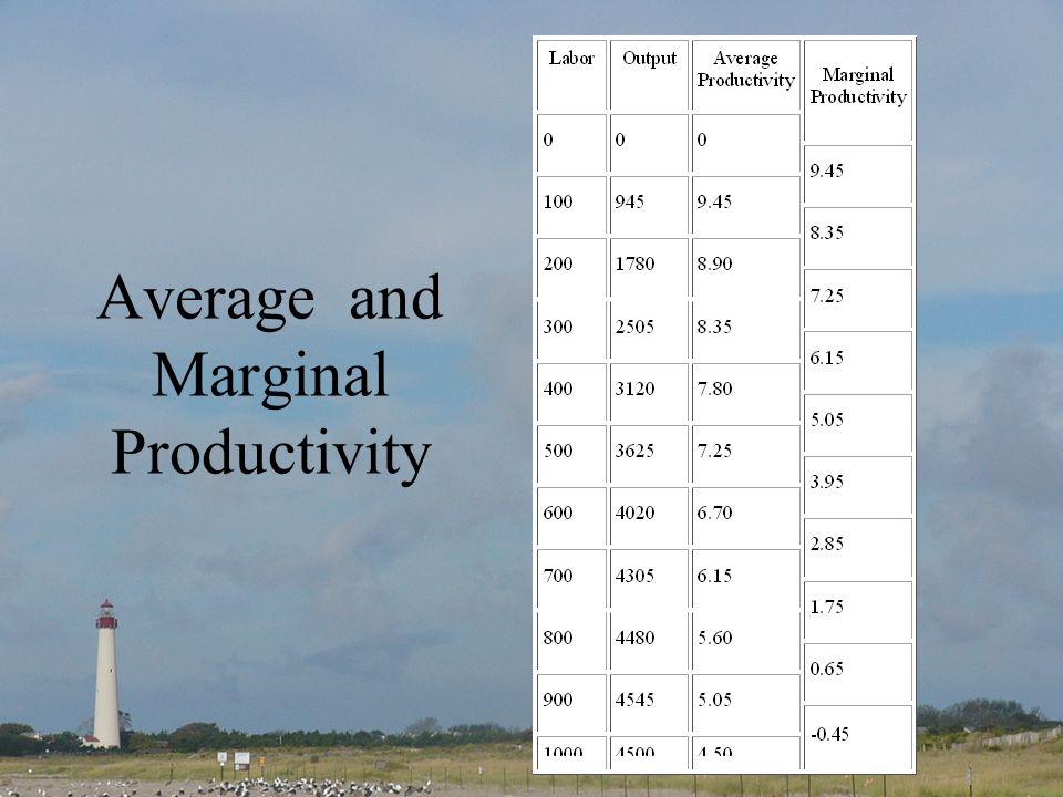 Average and Marginal Productivity