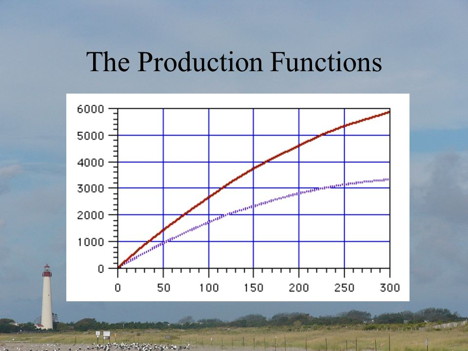 The Production Functions
