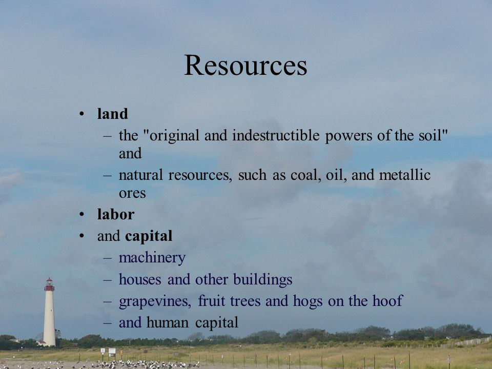 Resources land –the original and indestructible powers of the soil and –natural resources, such as coal, oil, and metallic ores labor and capital –machinery –houses and other buildings –grapevines, fruit trees and hogs on the hoof –and human capital