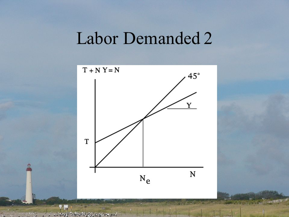 Labor Demanded 2