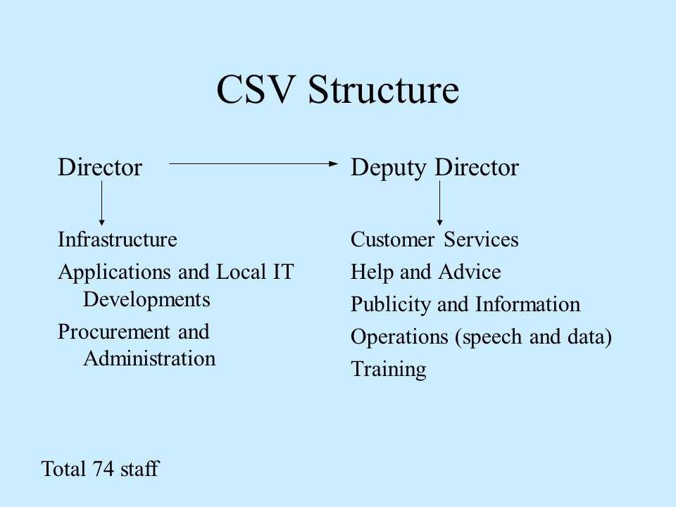 CSV Structure Director Infrastructure Applications and Local IT Developments Procurement and Administration Deputy Director Customer Services Help and Advice Publicity and Information Operations (speech and data) Training Total 74 staff
