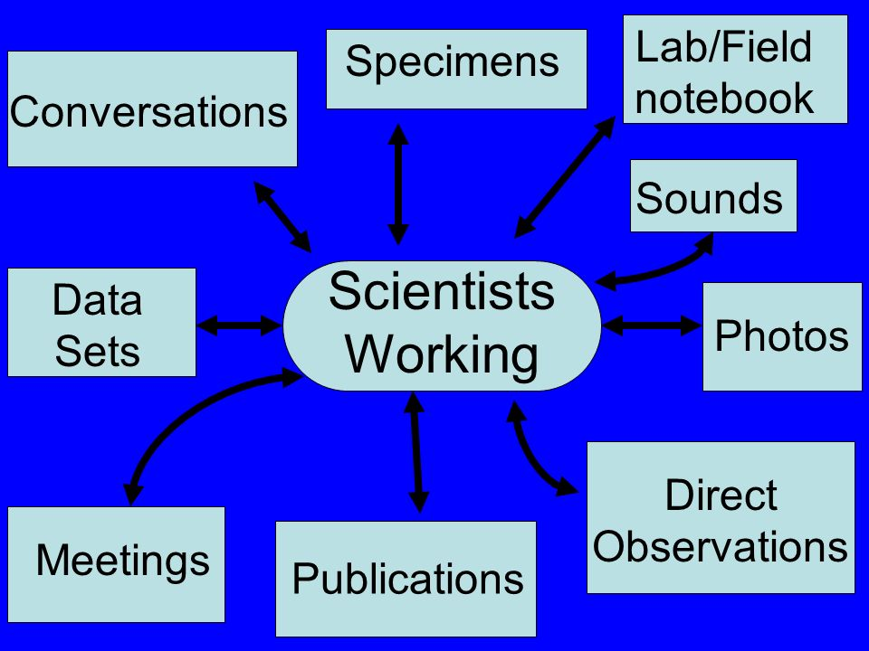 Scientists Working Photos Data Sets Direct Observations Sounds Conversations Meetings Publications Specimens Lab/Field notebook