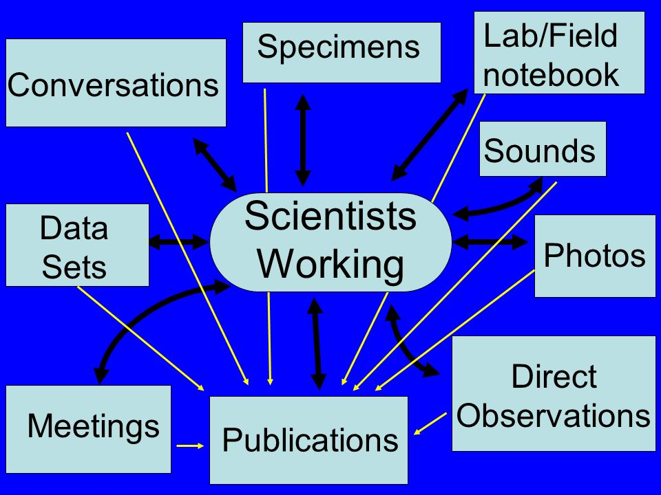 Photos Data Sets Direct Observations Sounds Conversations Meetings Publications Specimens Lab/Field notebook Scientists Working