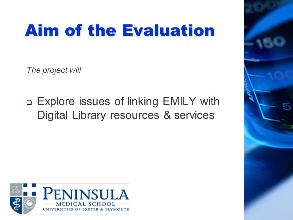 Aim of the Evaluation The project will Explore issues of linking EMILY with Digital Library resources & services