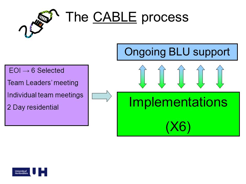EOI 6 Selected Team Leaders meeting Individual team meetings 2 Day residential Implementations (X6) Ongoing BLU support The CABLE process