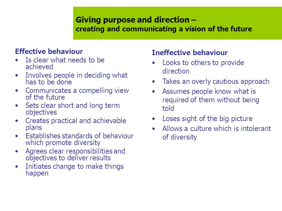 Giving purpose and direction – creating and communicating a vision of the future Effective behaviour Is clear what needs to be achieved Involves peopl