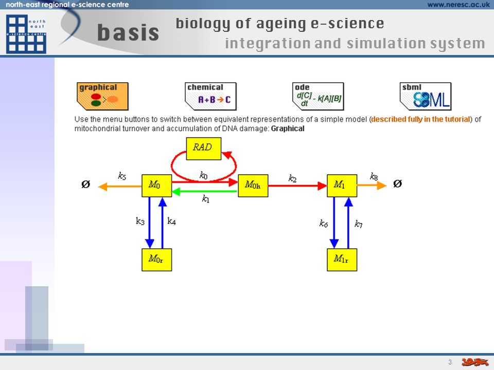 4 basis biology of ageing e-science integration and simulation system