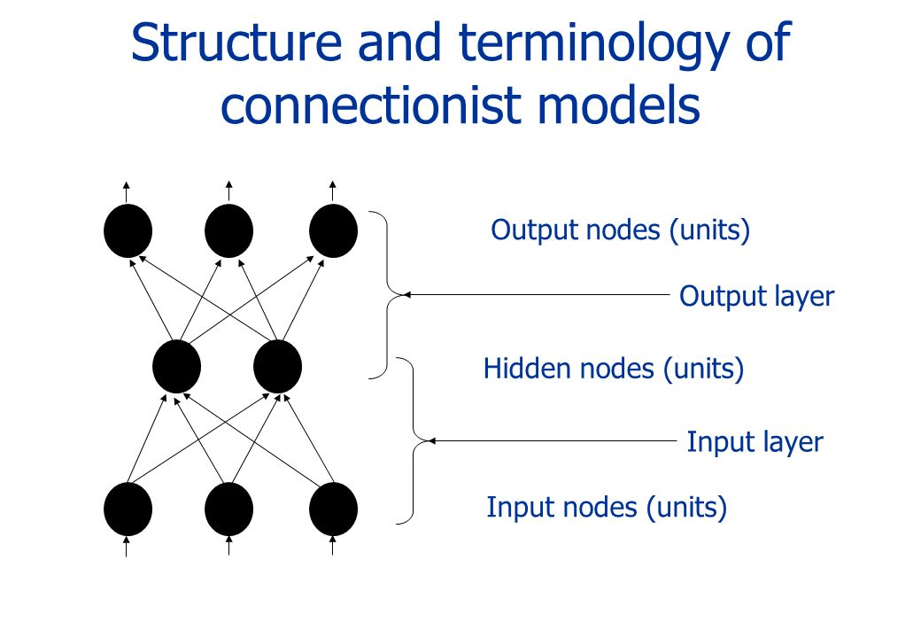 Structure and terminology of connectionist models Input nodes (units) Hidden nodes (units) Output nodes (units) Output layerInput layer