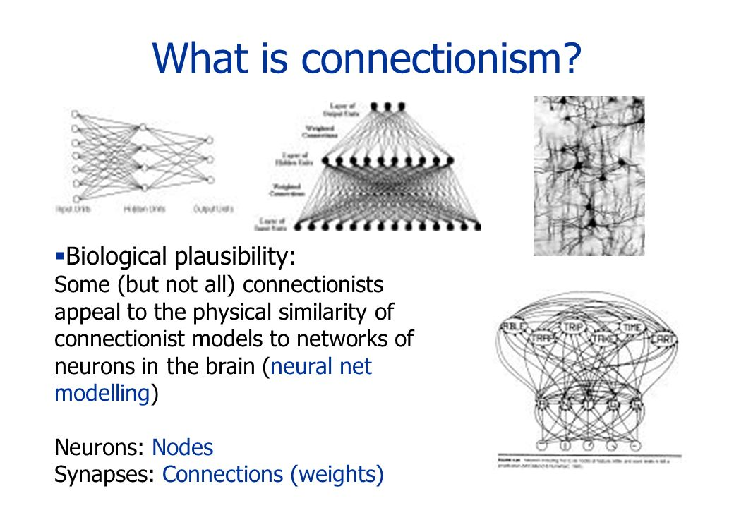 What is connectionism? Biological plausibility: Some (but not all) connectionists appeal to the physical similarity of connectionist models to network