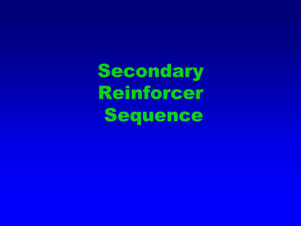 Secondary Reinforcer Sequence