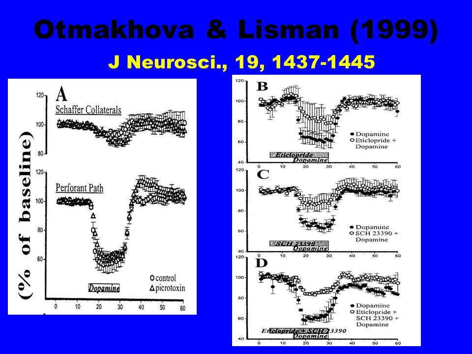 Otmakhova & Lisman (1999) J Neurosci., 19, 1437-1445
