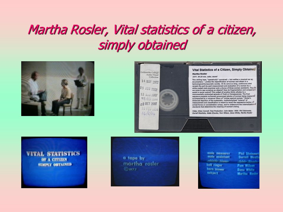 Martha Rosler, Vital statistics of a citizen, simply obtained