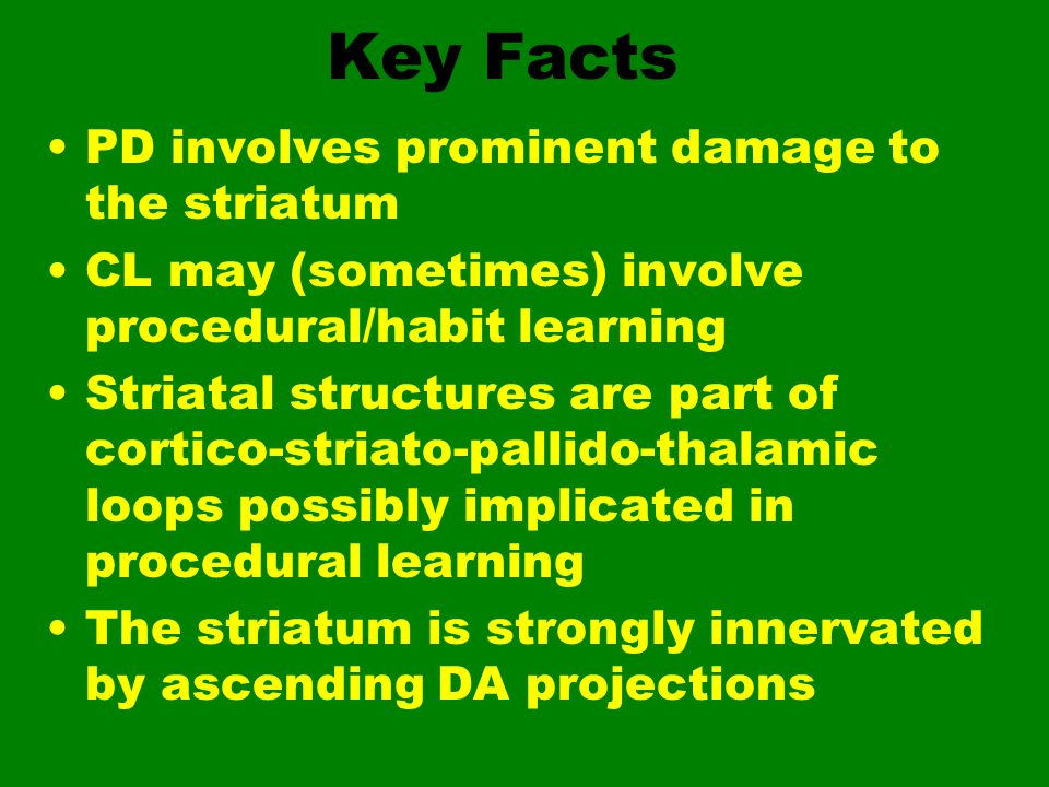 Key Facts PD involves prominent damage to the striatum CL may (sometimes) involve procedural/habit learning Striatal structures are part of cortico-st