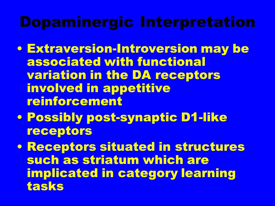 Dopaminergic Interpretation Extraversion-Introversion may be associated with functional variation in the DA receptors involved in appetitive reinforcement Possibly post-synaptic D1-like receptors Receptors situated in structures such as striatum which are implicated in category learning tasks