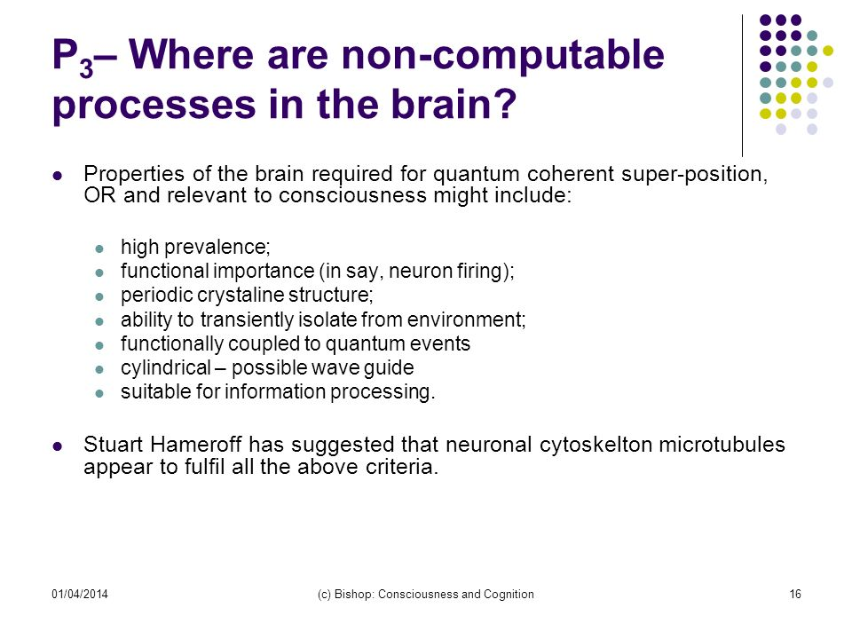 P 3 – Where are non-computable processes in the brain? Properties of the brain required for quantum coherent super-position, OR and relevant to consci