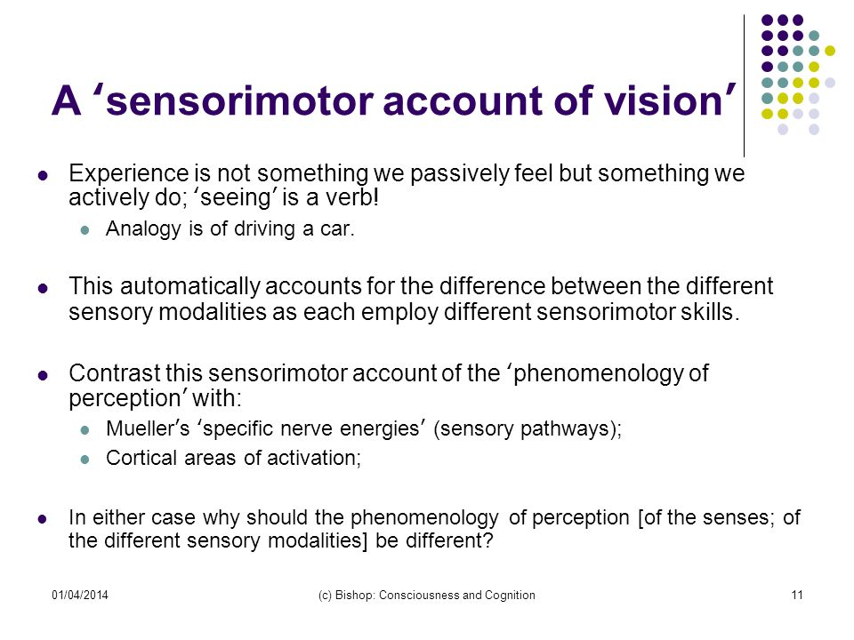 01/04/2014(c) Bishop: Consciousness and Cognition11 A sensorimotor account of vision Experience is not something we passively feel but something we ac