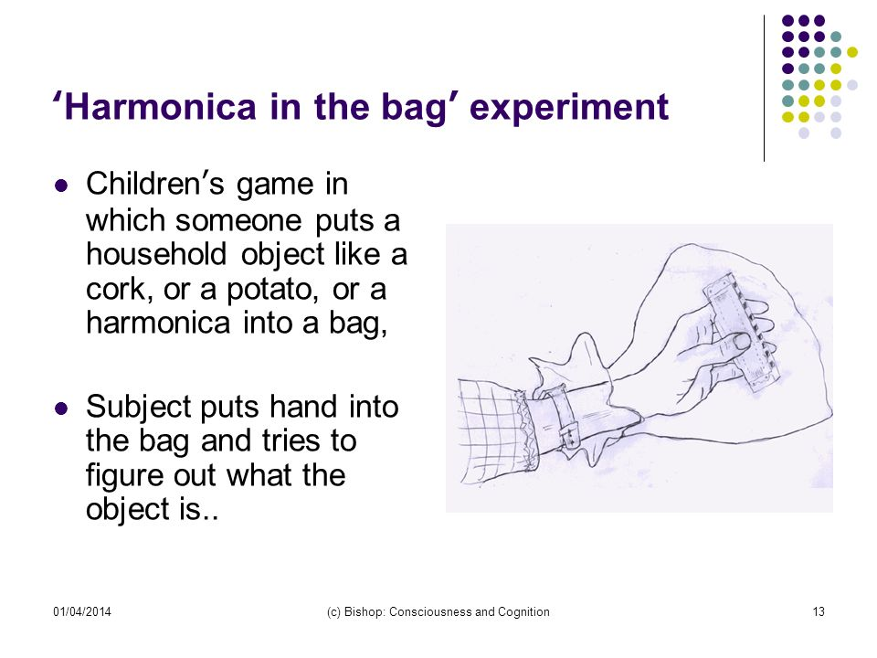 01/04/2014(c) Bishop: Consciousness and Cognition13 Harmonica in the bag experiment Childrens game in which someone puts a household object like a cork, or a potato, or a harmonica into a bag, Subject puts hand into the bag and tries to figure out what the object is..
