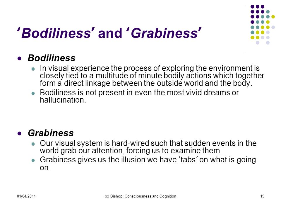 01/04/2014(c) Bishop: Consciousness and Cognition19 Bodiliness and Grabiness Bodiliness In visual experience the process of exploring the environment