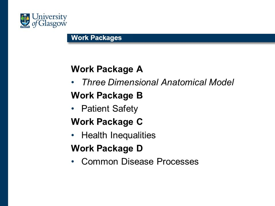 Work Packages Work Package A Three Dimensional Anatomical Model Work Package B Patient Safety Work Package C Health Inequalities Work Package D Common Disease Processes
