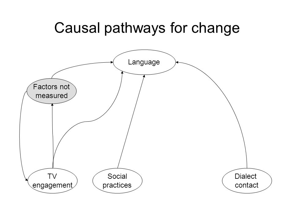 TV engagement Language Social practices Dialect contact Causal pathways for change Factors not measured