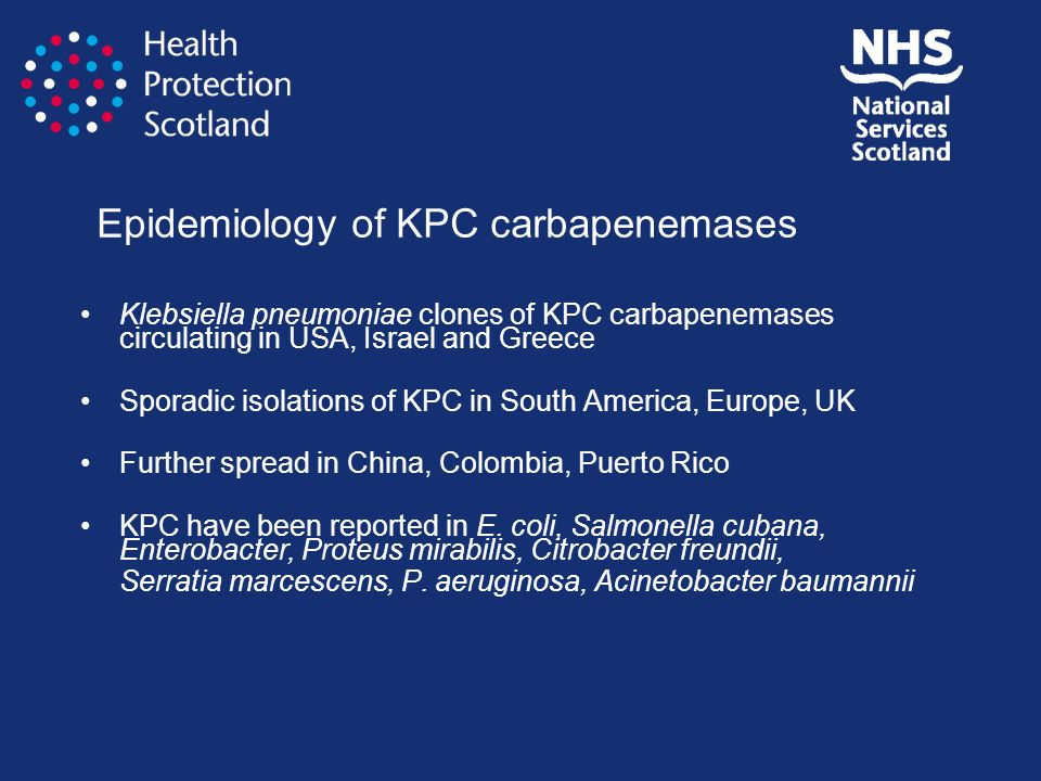 Epidemiology of KPC carbapenemases Klebsiella pneumoniae clones of KPC carbapenemases circulating in USA, Israel and Greece Sporadic isolations of KPC