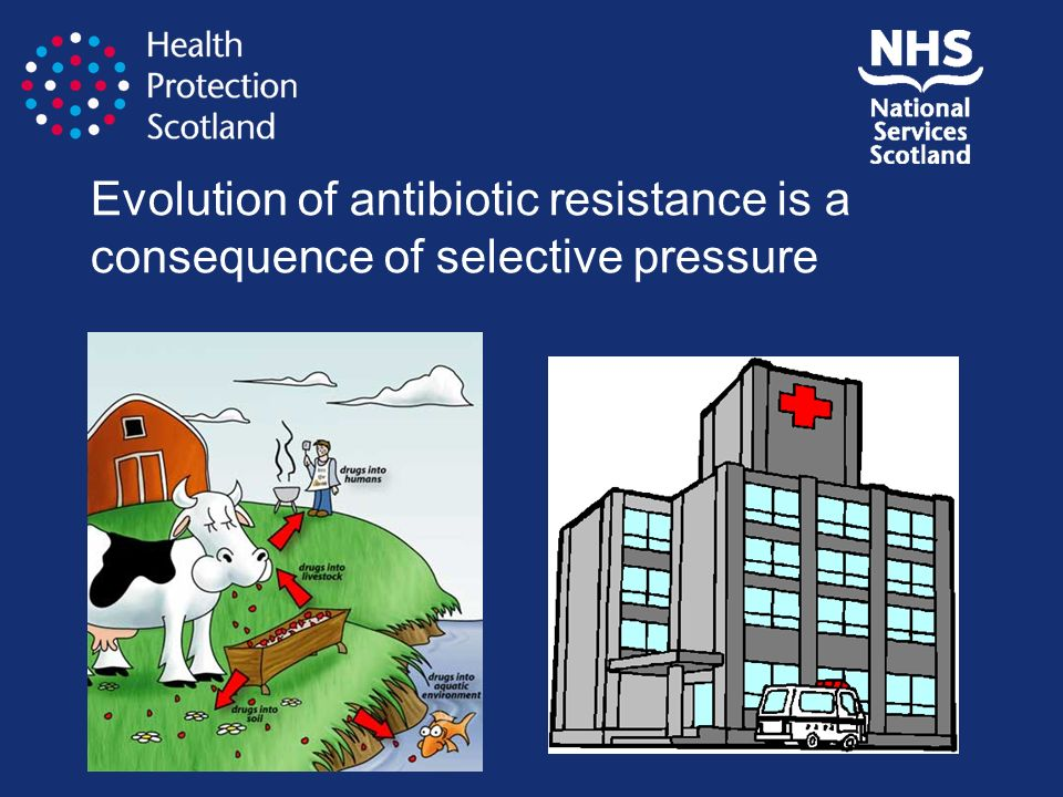 Evolution of antibiotic resistance is a consequence of selective pressure
