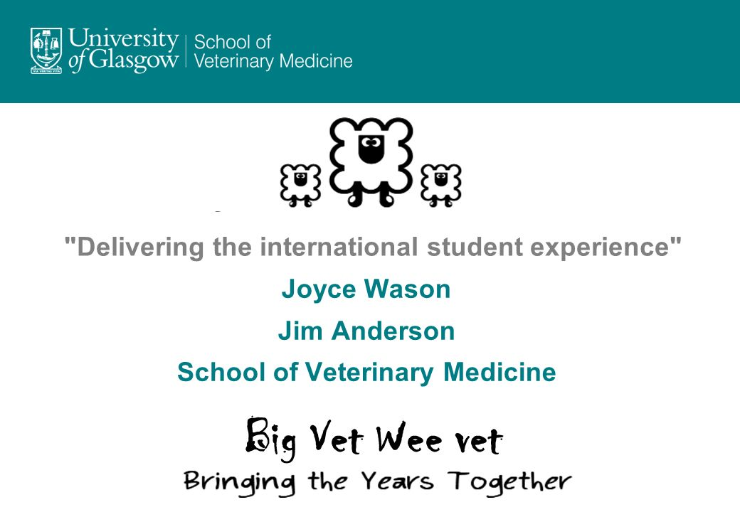 Delivering the international student experience Joyce Wason Jim Anderson School of Veterinary Medicine Big Vet Wee vet