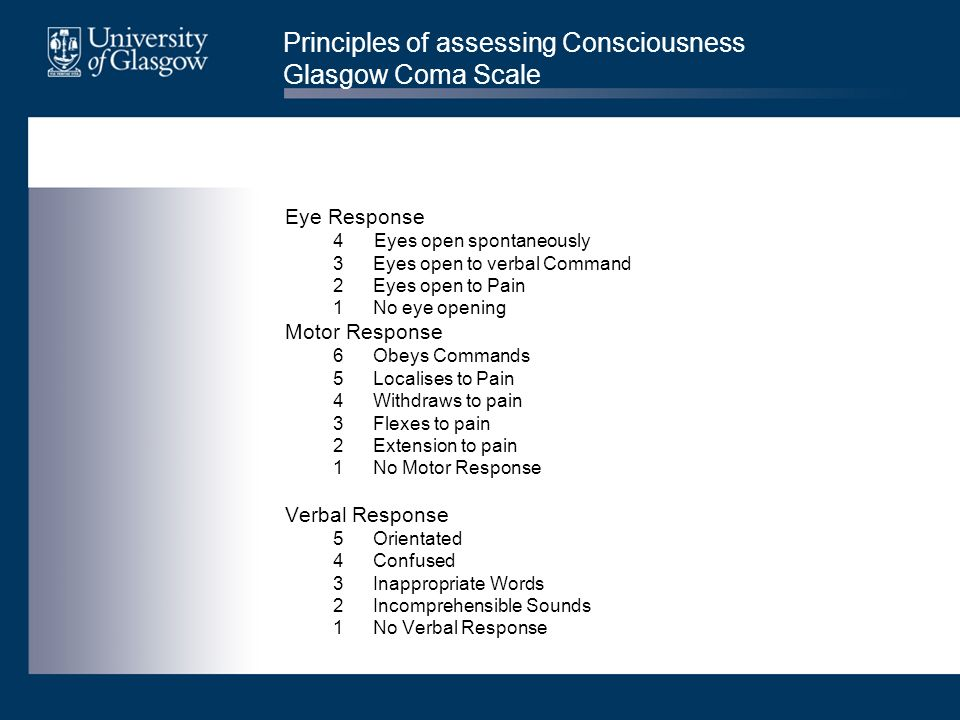 Principles of assessing Consciousness Glasgow Coma Scale Eye Response 4 Eyes open spontaneously 3Eyes open to verbal Command 2Eyes open to Pain 1No ey