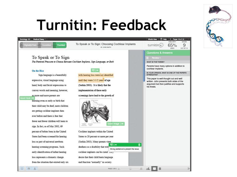 Turnitin: Feedback