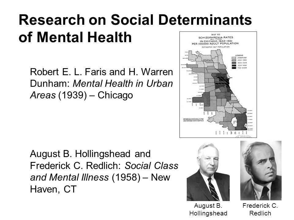 Research on Social Determinants of Mental Health Robert E.