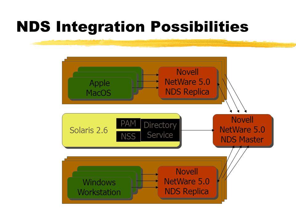 Novell NetWare 5.0 NDS Master Novell NetWare 5.0 NDS Replica Apple MacOS Windows Workstation Novell NetWare 5.0 NDS Replica Solaris 2.6 PAM NSS Direct