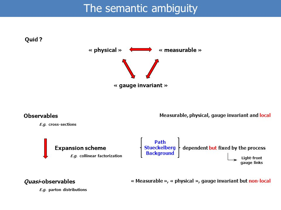 The semantic ambiguity Path Stueckelberg Background Observables Quasi-observables Quid .
