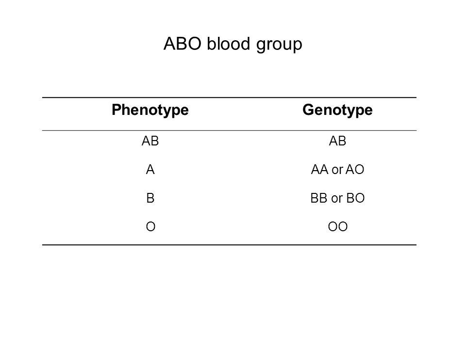 ABO blood group PhenotypeGenotype AB AAA or AO BBB or BO OOO