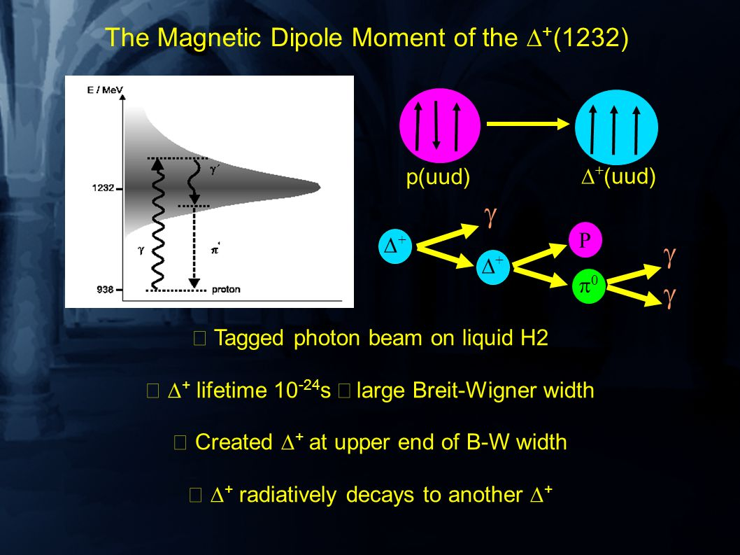 The Magnetic Dipole Moment of the + (1232) Tagged photon beam on liquid H2 + lifetime 10 -24 s large Breit-Wigner width Created + at upper end of B-W